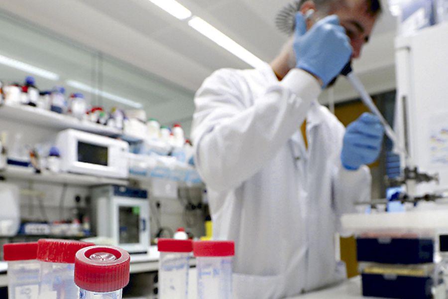 cienciaweb