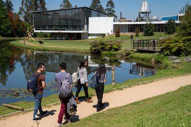 Carreras Técnicas no requieren PSU: UC Temuco ya inició su Proceso de Matrícula Directa
