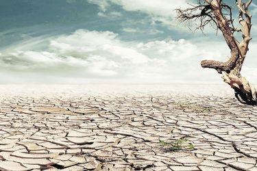 Casos judiciales sobre cambio climático se han duplicado en tres años en el mundo