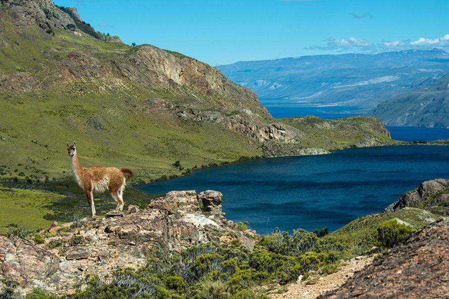 Parque Patagonia 1