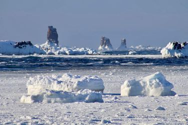 Brote de coronavirus en base chilena en la Antártica: Ejército confirma 36 positivos por Covid-19 y evacúa a personal