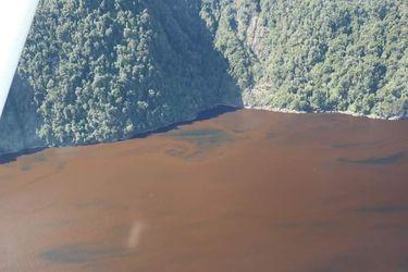 Corales y peces en peligro: El desastre ambiental que golpea al fiordo Comau