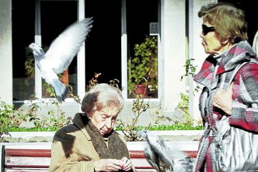 cesantía abuelitos abuelo viejo anciano anciana vieja abuela 2