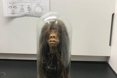 Científicos resuelven el misterio de extraña cabeza descubierta por arqueólogos en Ecuador