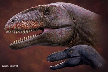 Científicos descubren un nuevo dinosaurio que antecedió al Tiranosaurio Rex en el trono de los grandes depredadores