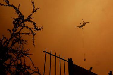 Ministerio Público inicia investigación por incendio forestal en Quilpué