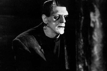 Stone Village Television está desarrollando una nueva serie de Frankenstein