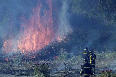 Megaincendios son responsables del 90% del CO2 emitido en un año en el país