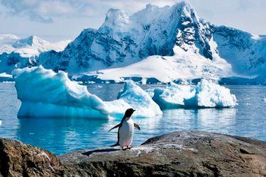 Antartida-Home