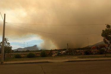 Incendio consume la mitad de nuevo Santuario de la Naturaleza en Maipú