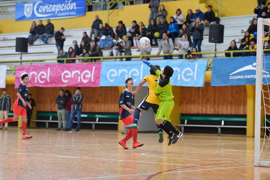 Copa Enel