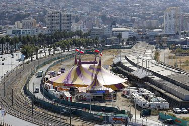 Tras meses de cierre por la pandemia: Circos podrán volver a funcionar en comunas en Fase 4 del Plan Paso a Paso