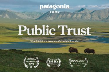 Con documental producido por Robert Redford y otro que retrata la lucha de vecinos en el Cajón del Maipo parte Festival Santiago Wild