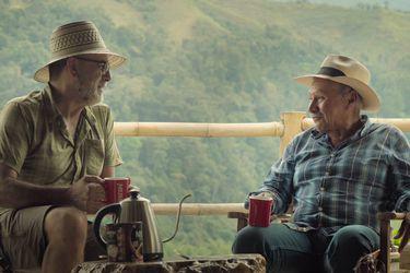Herencia, respeto y amor a la tierra: viaje a la esencia del café
