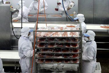 Los frentes regulatorios en que trabaja el sector salmonero