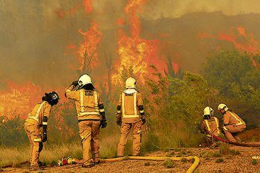 Región del Maule: Intendencia declara alerta roja en Molina por incendio cercano a viviendas