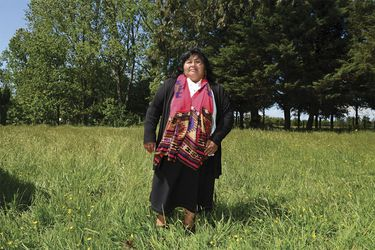 La diputada mapuche