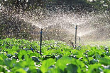 El rol y la transformación empresarial en una era marcada por la crisis hídrica