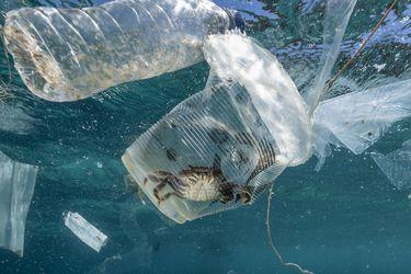 Plastic Waste in Verde Island, Philippines