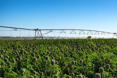 Certificado Azul: Impulsando la gestión pública- privada del recurso hídrico