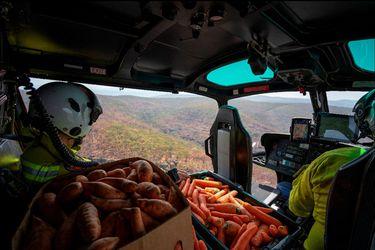 Australia lanza alimento a animales afectados por incendios forestales (Reuters)