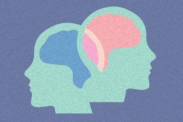 Neurosexismo: la ciencia que rompe el mito de las diferencias cognitivas entre el hombre y la mujer