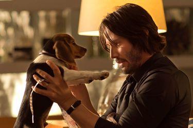 El estudio detrás de John Wick intentó eliminar la historia del perrito
