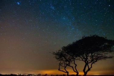 Lluvia de estrellas Oriónidas: Restos del cometa Halley se podrán apreciar esta noche en Santiago