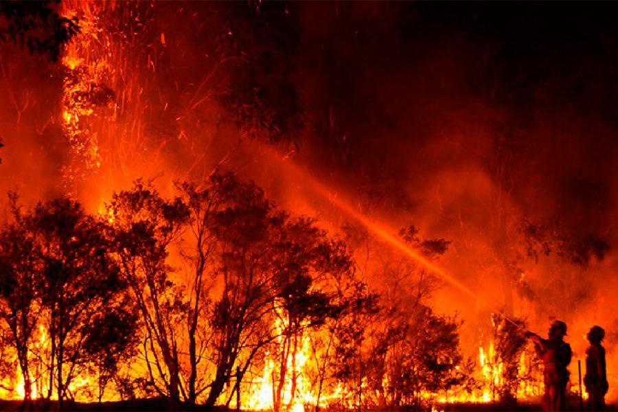 australia-incendio (1)