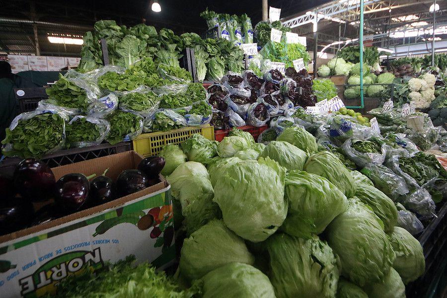 El rol de la alimentación en la prevención del cáncer / Foto: Agencia Uno