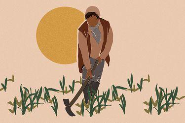 Mujeres rurales en tiempos de crisis