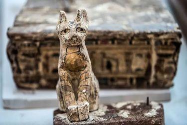 Descubren momias de animales de 2.600 años de antigüedad