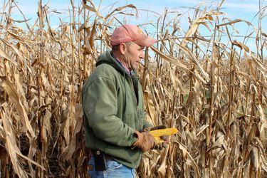 El maíz es la más reciente materia prima en dispararse en precio