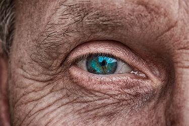 """Experta advierte que """"alzheimerización"""" del envejecimiento ha llevado a mirar la vejez como sinónimo de enfermedad"""