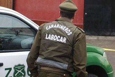 Ataques en Tirúa: dos carabineros heridos tras emboscada a tiros y un trabajador lesionado y 25 animales muertos en un predio agrícola