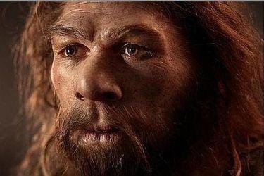 El misterioso antepasado que se cruzó con antiguos humanos: algunas personas tienen ADN de un  desaparecido ancestro no identificado
