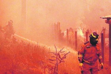 Conaf detecta que 37% de los incendios forestales son intencionales en el país