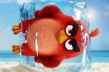 Angry Birds se presenta con este nuevo tráiler internacional