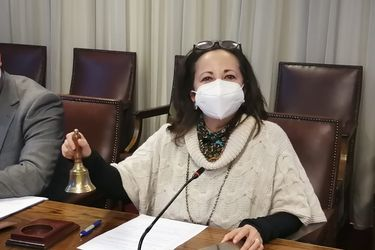 Diputada Alejandra Sepúlveda es elegida presidenta de la Comisión Investigadora por rentas vitalicias