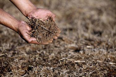 Economía circular contra la desertificación y la sequía