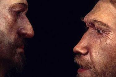 ¿Seguiríamos viéndonos a nosotros mismos como 'humanos' si otras especies de homínidos como los neandertales no se hubieran extinguido?