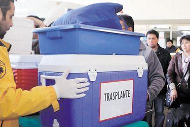 Quirófano solidario: aumentan los trasplantes y donantes de órganos durante el primer trimestre