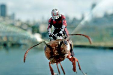 """El director de Ant-Man 3 dice que la película será """"más grande y extensa"""" que sus predecesoras"""