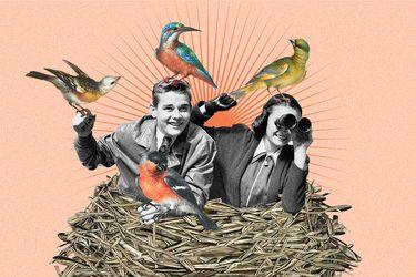 Avistamientos de aves: Dónde practicar esta actividad familiar