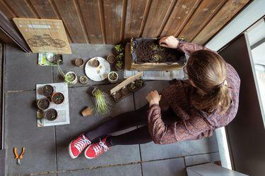 Sí, dice la ciencia, cuidar plantas permite sobrellevar el estrés de la cuarentena