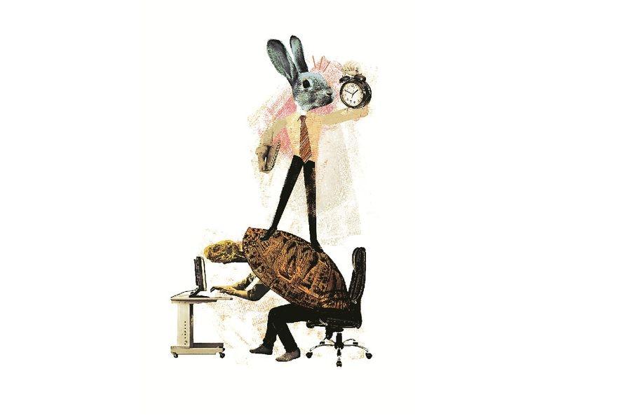imagen-conejo-tortuga
