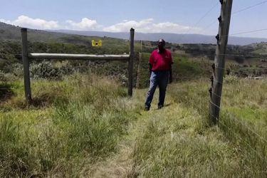 Kenia | Instalan cercos eléctricos para proteger a los bosques de los humanos