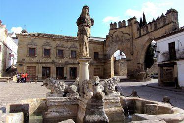 Los mejores planes de oleoturismo en España