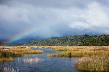 El nuevo mapa de los humedales en Chile: actualización identifica 5,6 millones de hectáreas