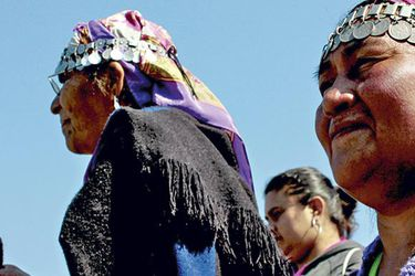 Encuesta UC sobre interculturalidad: 77% de mapuches rechaza ataques incendiarios